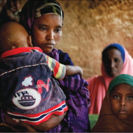 Slowly and Steadily, Somaliland Builds its Health System