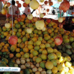 Somaliland market
